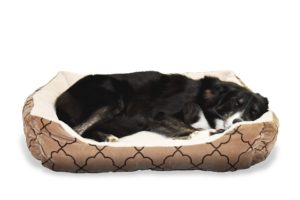 dog sleeping in a dog bed