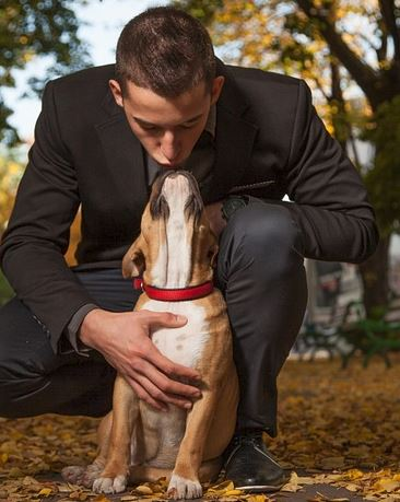 Pet Ownership on the Rise