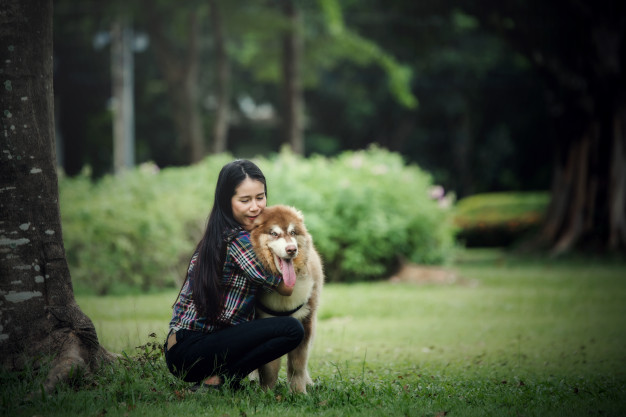 Stay Home with Your Pet & De-Stress Together