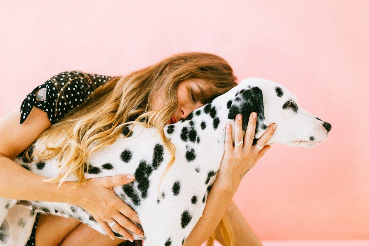 hugging dalmatian dog