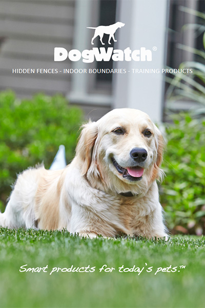 Dogwatch Brochure Front Cover