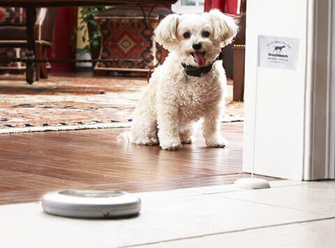 Indoor Pet Containment Products